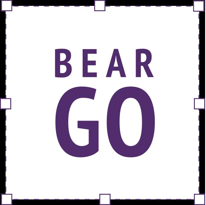 icon-bear-go
